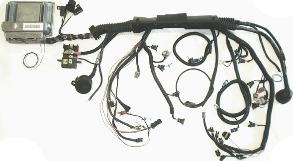 299 e46 ls swap wiring harness 82c 10 ls swap \u2022 wiring diagrams j Wiring Harness Diagram at alyssarenee.co